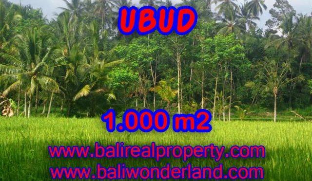 Jual tanah di Ubud 10 Are di Ubud Payangan Bali