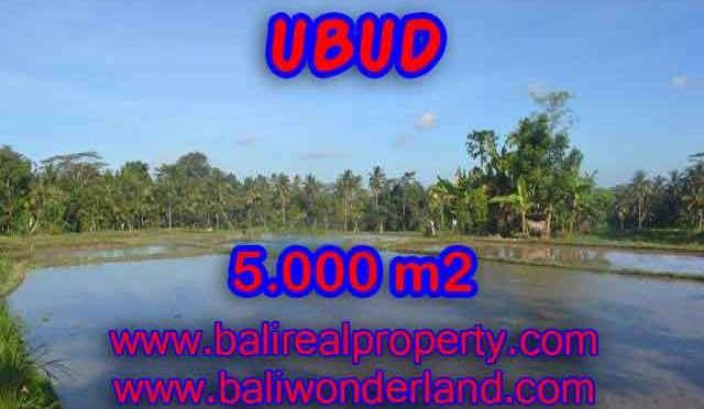 TANAH DIJUAL DI BALI, MURAH DI UBUD RP 1.650.000 / M2 - TJUB413 - INVESTASI PROPERTY DI BALI