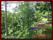 TJUB422 - JUAL TANAH MURAH DI UBUD - LAND FOR SALE IN UBUD BALI 02