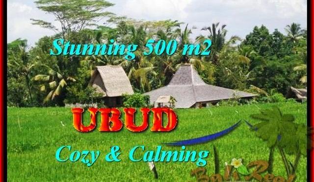 JUAL MURAH TANAH di UBUD 5 Are View Sawah link Villa