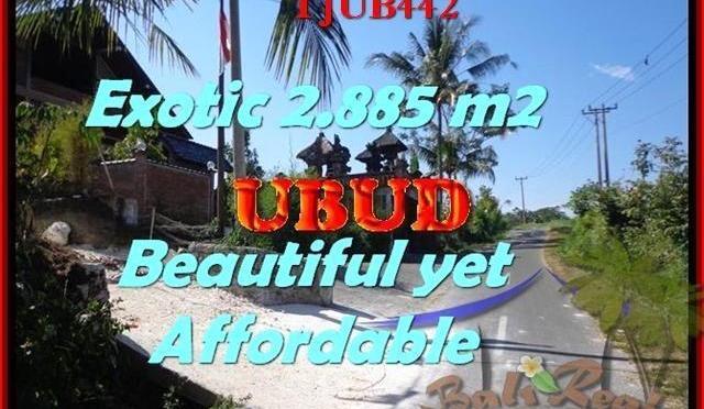 DIJUAL MURAH TANAH di UBUD TJUB442