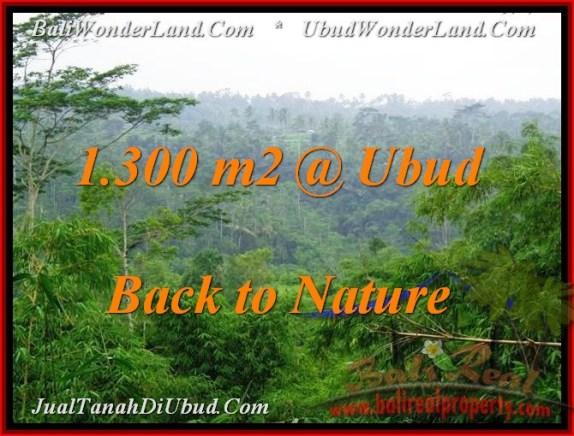 TANAH MURAH di UBUD 1,300 m2  View Tebing dan Kebun