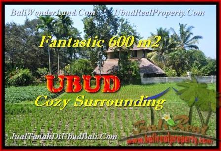 DIJUAL MURAH TANAH di UBUD 600 m2 di Ubud Pejeng