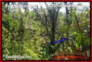 TANAH DIJUAL di UBUD BALI 2.400 m2 View Kebun dan tebing