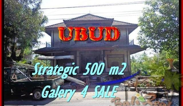 TANAH DIJUAL di UBUD Untuk INVESTASI TJUB438