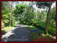 JUAL MURAH TANAH di UBUD 1,200 m2 di Ubud Tegalalang