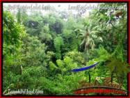 TANAH MURAH di UBUD BALI 600 m2 di Ubud Tampak Siring