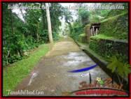 TANAH JUAL MURAH UBUD 600 m2 View Tebing dan kebun