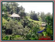 JUAL TANAH MURAH di UBUD BALI Untuk INVESTASI TJUB514