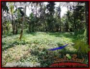 TANAH di UBUD BALI DIJUAL MURAH 2,000 m2 View Tebing dan sungai