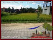 JUAL TANAH MURAH di UBUD 15 Are View Sawah link Villa