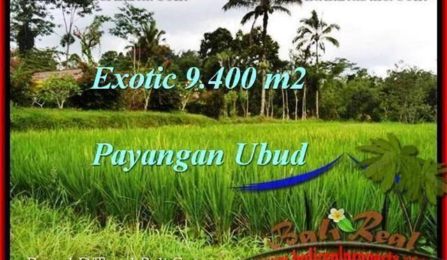 DIJUAL TANAH di UBUD 9,400 m2 di Ubud Payangan