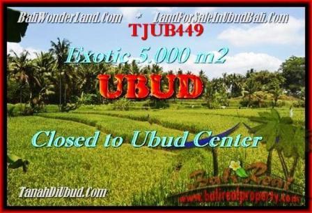 TANAH MURAH di UBUD 5.000 m2 View sawah dan sungai link villa