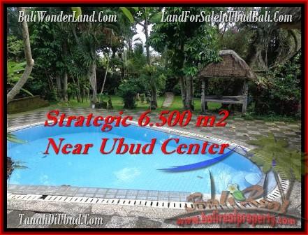 TANAH DIJUAL MURAH di UBUD BALI Untuk INVESTASI TJUB479