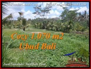 JUAL TANAH MURAH di UBUD Untuk INVESTASI TJUB536