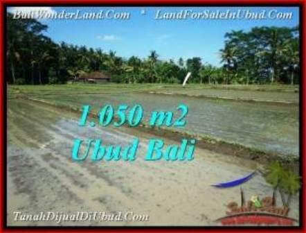 TANAH di UBUD JUAL MURAH 10.5 Are View Sawah, link. villa