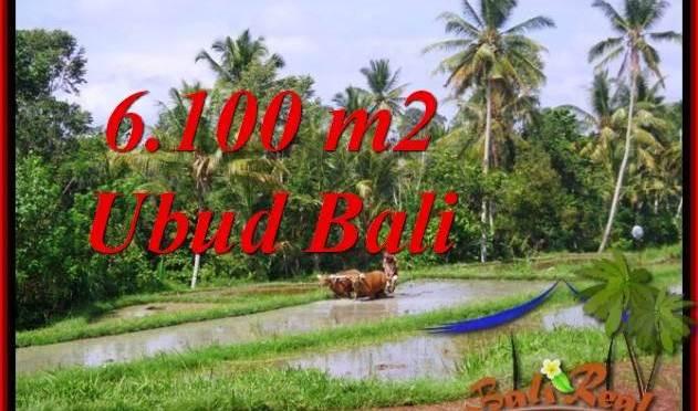 JUAL MURAH TANAH di UBUD BALI 6,100 m2 View Sawah lingkungan villa