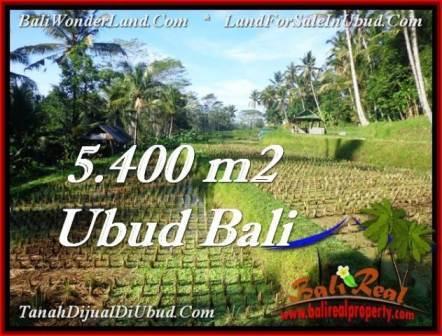 TANAH di UBUD BALI DIJUAL MURAH 5,400 m2 di Ubud Payangan