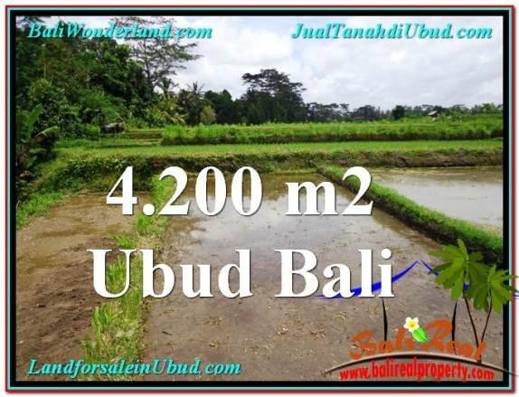 TANAH di UBUD BALI DIJUAL MURAH Untuk INVESTASI TJUB561