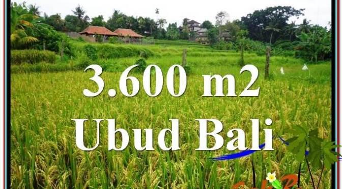 TANAH MURAH di UBUD BALI 3,600 m2 View sawah link Villa dan Restorant
