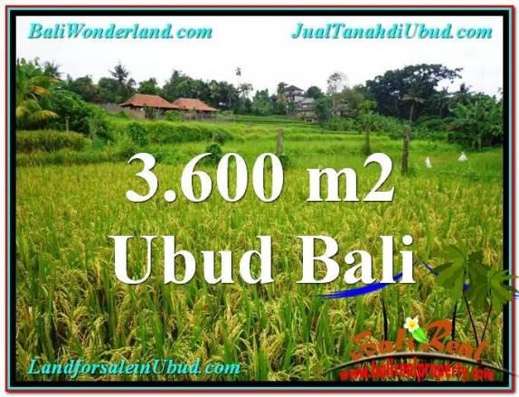 JUAL MURAH TANAH di UBUD 3,600 m2 di Sentral Ubud
