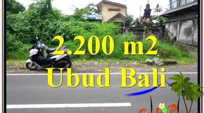 TANAH DIJUAL MURAH di UBUD TJUB565