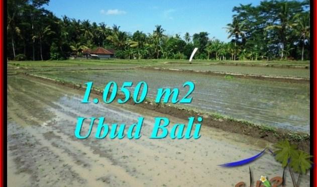 DIJUAL TANAH di UBUD 1,050 m2 di Sentral Ubud