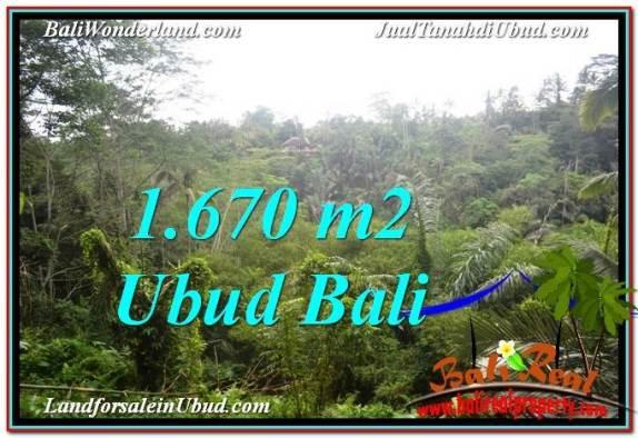 DIJUAL TANAH di UBUD Untuk INVESTASI TJUB569