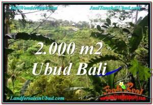 TANAH MURAH JUAL di UBUD BALI 2,000 m2  View Tebing dan Sungai
