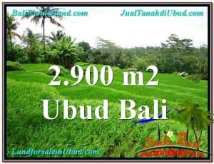 DIJUAL TANAH di UBUD 29 Are di Ubud Tampak Siring