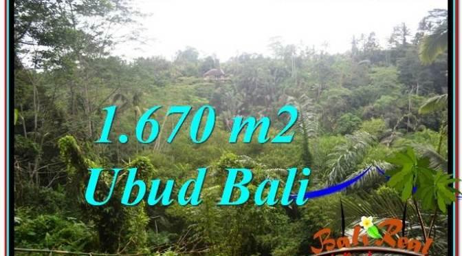 TANAH MURAH JUAL UBUD 1,670 m2 View Tebing