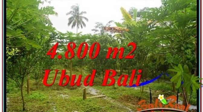 JUAL TANAH di UBUD BALI 4,800 m2 di Ubud Payangan