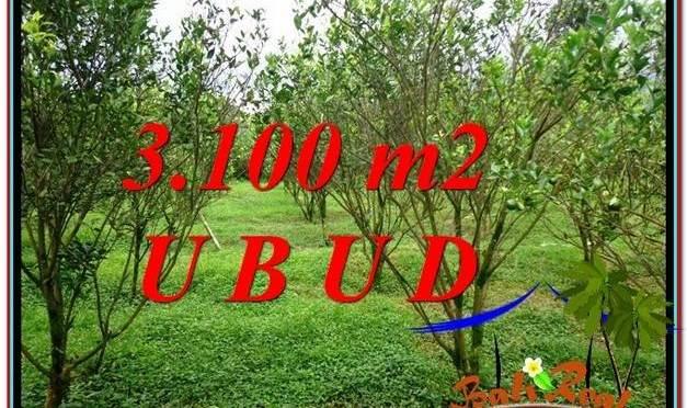 DIJUAL TANAH di UBUD TJUB593