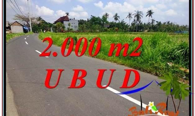 TANAH MURAH di UBUD BALI 2,000 m2 View Sawah link Villa