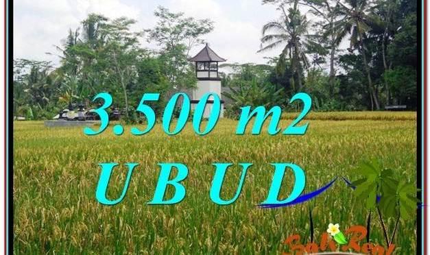 JUAL TANAH MURAH di UBUD BALI 3,500 m2 di Ubud Tegalalang