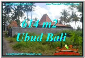 JUAL MURAH TANAH di UBUD TJUB622
