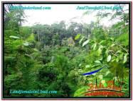 JUAL TANAH di UBUD BALI 2,000 m2 View Tebing lingkungan Villa
