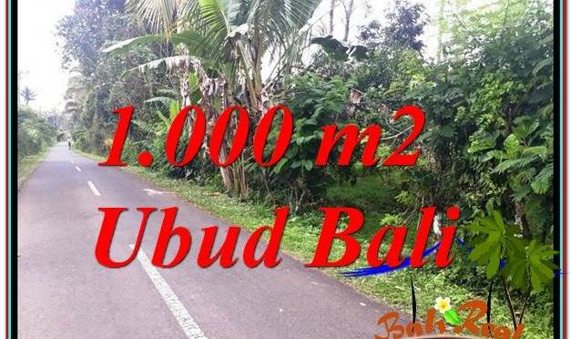 JUAL TANAH MURAH di UBUD BALI Untuk INVESTASI TJUB614