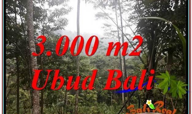 TANAH MURAH DIJUAL di UBUD BALI TJUB617