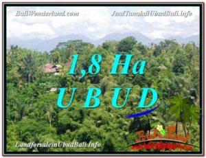 TANAH MURAH DIJUAL di UBUD Untuk INVESTASI TJUB589