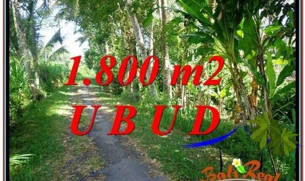 JUAL TANAH di UBUD BALI TJUB597