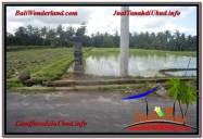 DIJUAL TANAH di UBUD BALI Untuk INVESTASI TJUB620