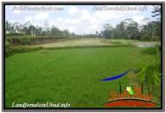 JUAL MURAH TANAH di UBUD 19 Are View Sawah dan Sungai