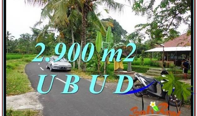 JUAL TANAH MURAH di UBUD BALI 2,900 m2 di Sentral Ubud