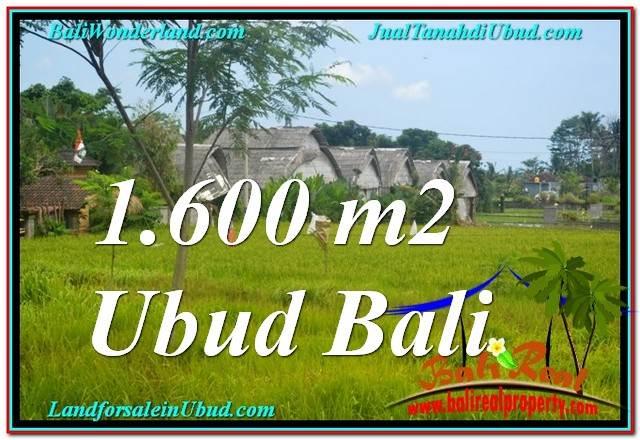 TANAH di UBUD BALI DIJUAL MURAH 1,600 m2  View Sawah, Link. Villa