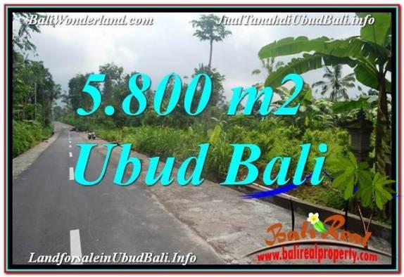 JUAL TANAH MURAH di UBUD BALI 5,800 m2  View Hutan dan Sungai