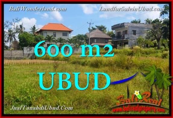 TANAH di UBUD BALI DIJUAL MURAH 600 m2 View Sawah link Villa