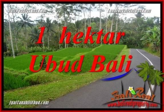 JUAL Tanah di Ubud 100 Are View Sungai dan Tebing