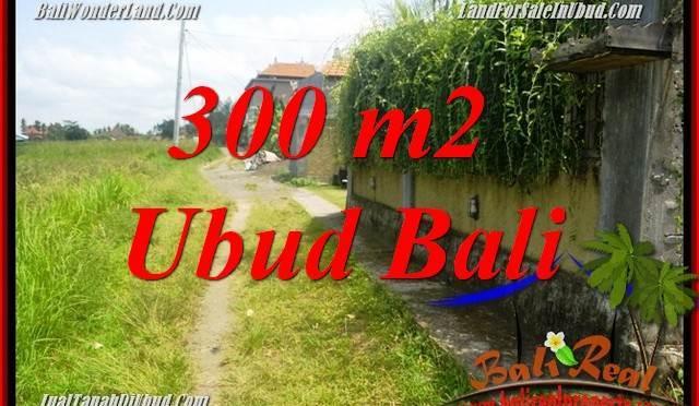 JUAL Murah Tanah di Ubud 300 m2 View sawah, lingkungan Villa