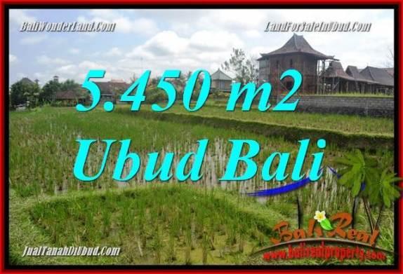 Tanah Murah di Ubud Dijual 55 Are di Sentral Ubud